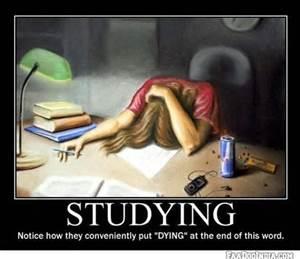 bar studying